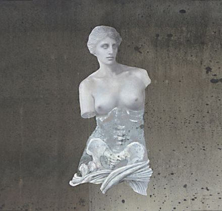Anatomical Venus (mirror) 2008 Silvered glass with giclee print.