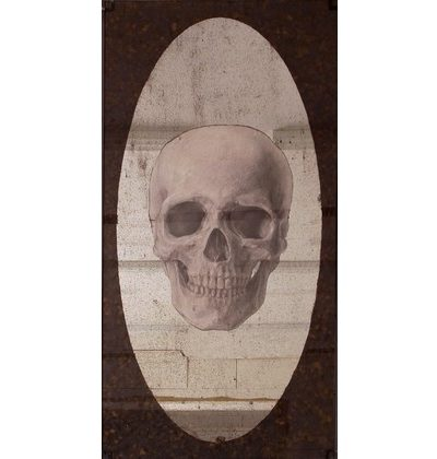 Anatomical Skull (mirror) 2014. Silvered glass and giclee print with lead frame. 1600 x 800mm