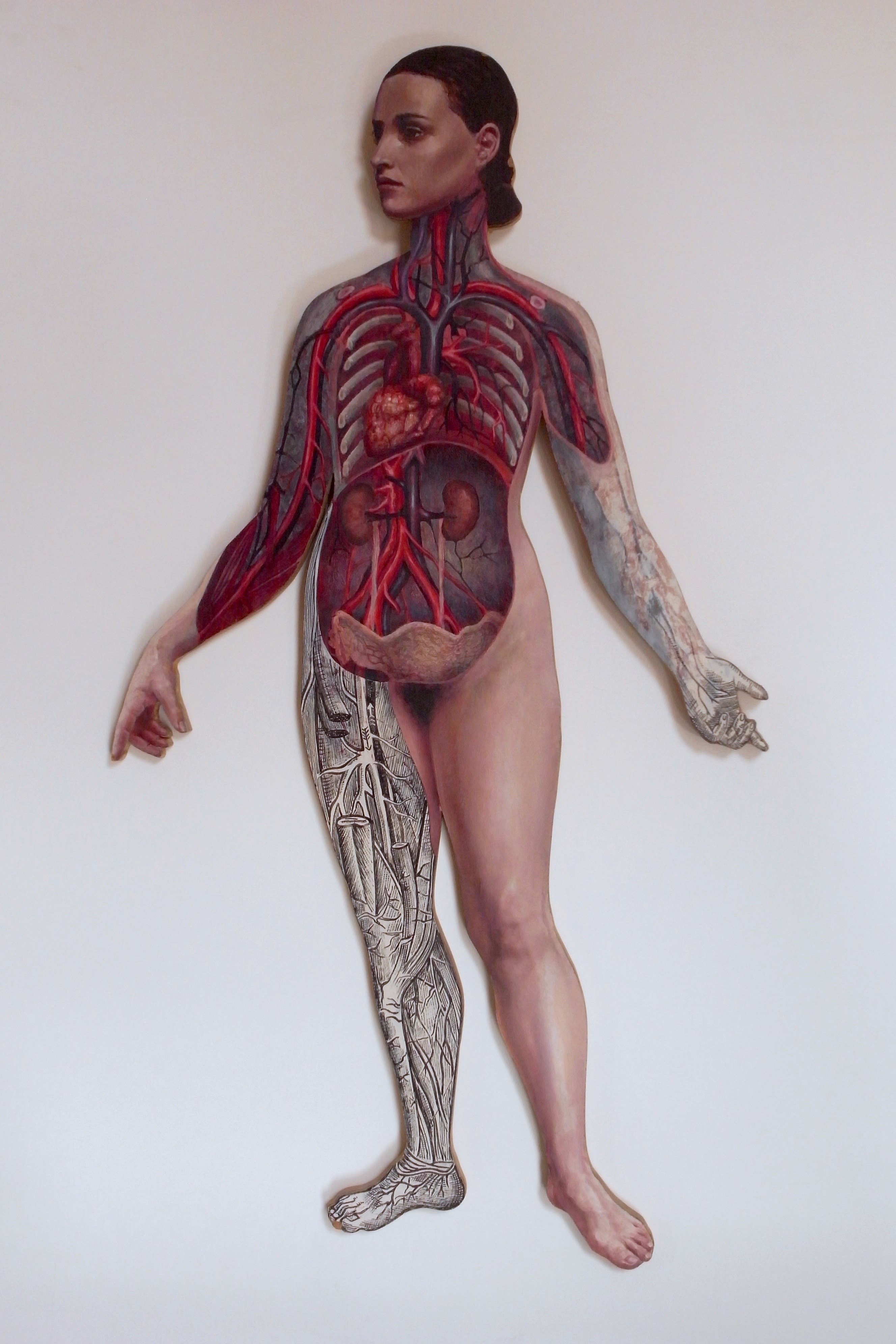 female anatomical painting based on Victorian medical engraving
